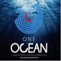 Logo One-Ocean-Foundation - Agenzia Marketing
